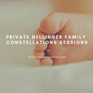 Copy of family constellations workshop copy 2